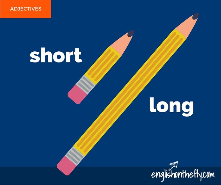English vocabulary for ESL and EFL students. Long and Short