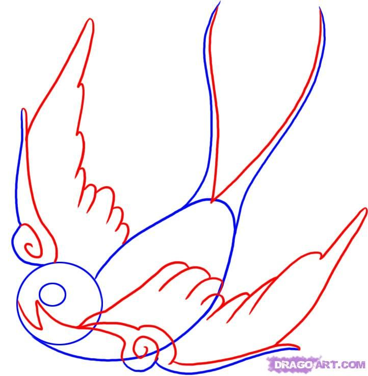 Bird Line Drawing Tattoo : Best sparrow images on pinterest swallows swallow