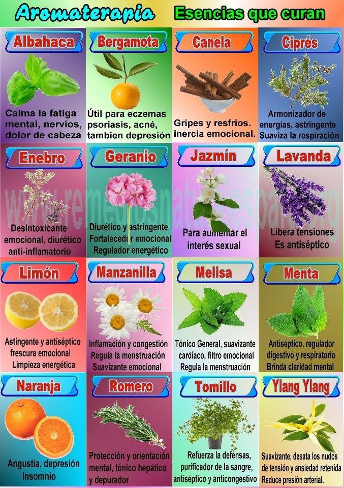 16 esencias naturales y sus propiedades en aromaterapia. #infografia #aromaterapia