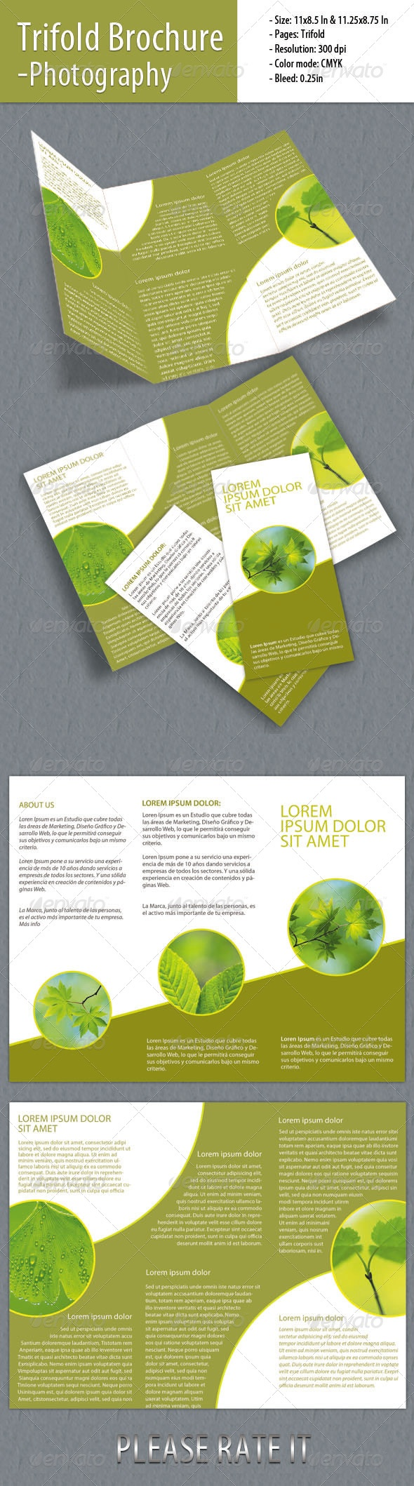 Best  Images On   Editorial Design Flyer Design
