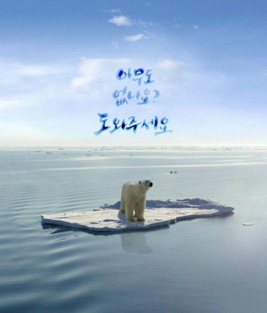 #캘리그라피 #Calligraphy #한글 #Hangeul #대한민국 #Korea #북극곰 #Polarbear #슬픈 #Lonely…