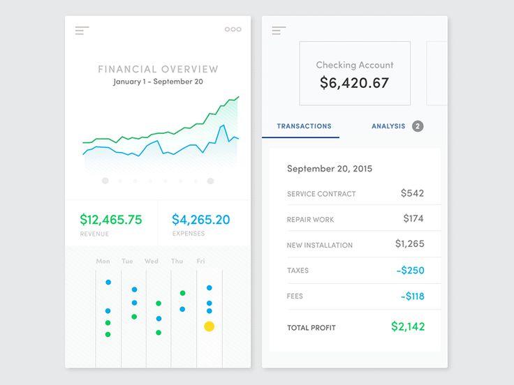 Financial Management App (Animation Concept)