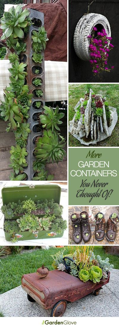 I love the tire with flowers: More Garden Containers You Never Thought Of • Tons of Tips & Ideas!