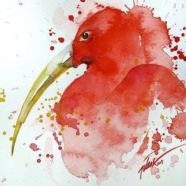 Экзотические птицы 04