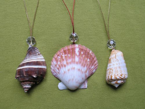 91 best sea shells images on pinterest seashell crafts for Seashell ornaments diy