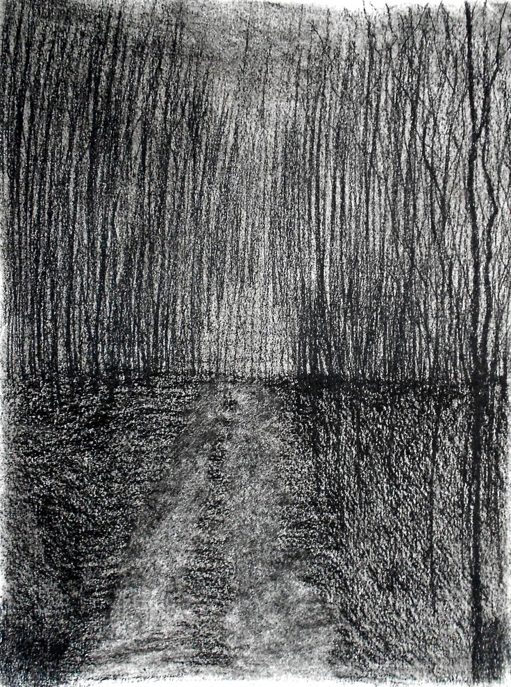 Charcoal Drawings Trees Night