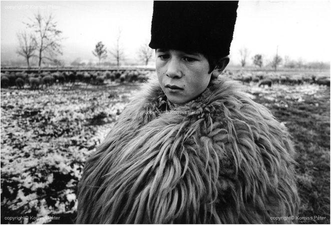 Korniss Péter: Pásztorgyerek. 1975
