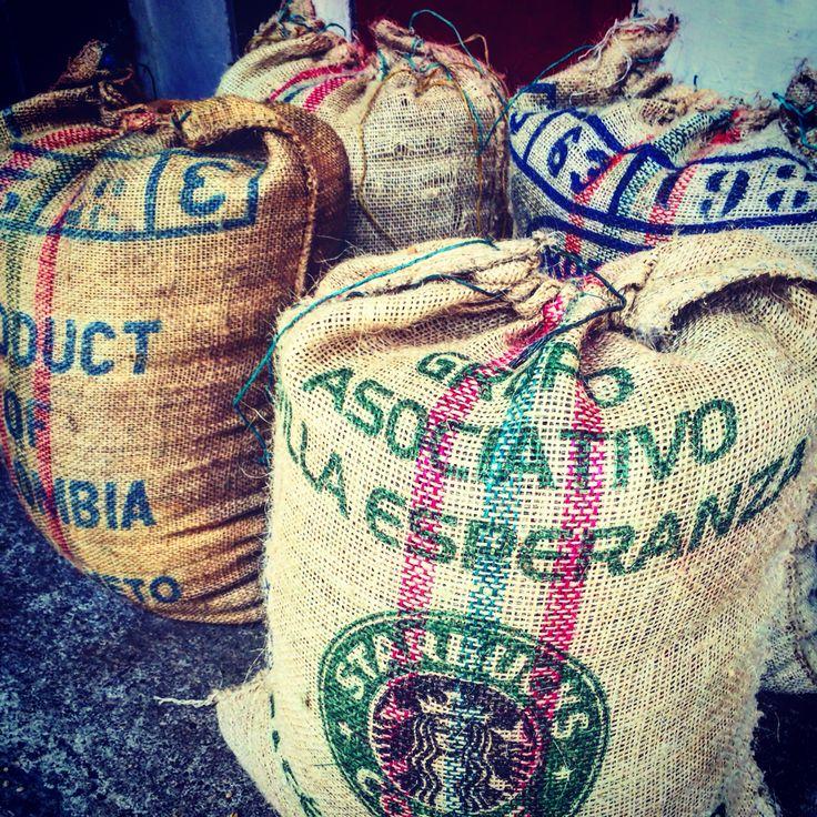 Manizales Colombia coffee region