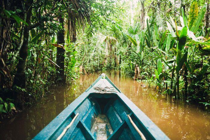 Amazon and the city of Puerto Maldonado, Peru // Guide through Peru on entouriste.com