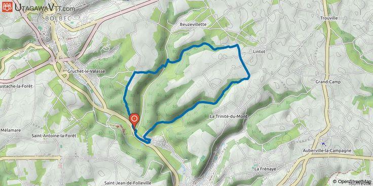 [Seine-Maritime] Circuit n°2 - Gruchet-le-Valasse Circuit en boucle au départ de Gruchet-le-Valasse qui emmène sur le plateau. Balisage bleu Circuit n°2. Alternance de chemins en forêts, entre les champs et de petits passages sur routes départementales.