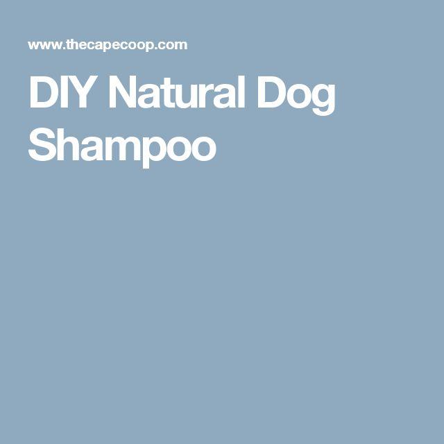 DIY Natural Dog Shampoo
