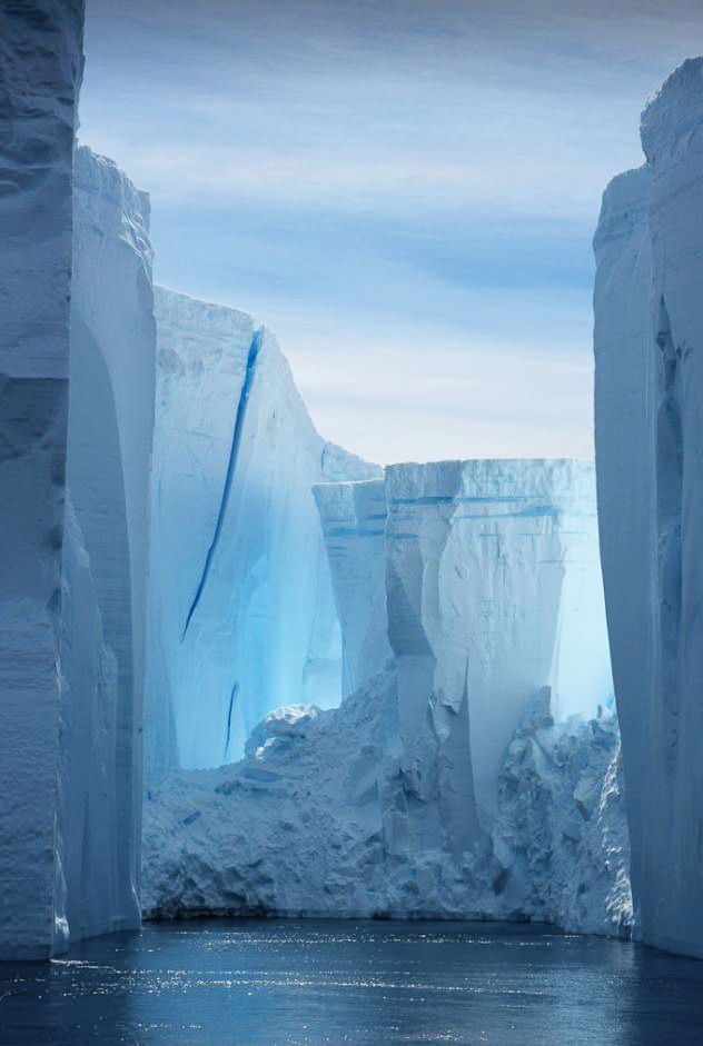 Icy towers, Weddell Sea / Southern Ocean - Antarctica (by Scott Ableman).