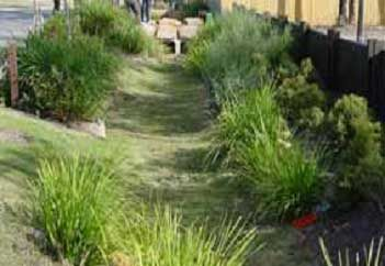 """""""Swales are simply shallow, low depressions in the ground designed to encourage the accumulation of rain during storms and hold it for a few hours or days to let it infiltrate into the soil."""""""