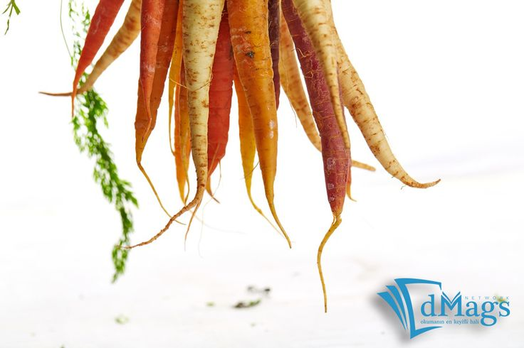 Sebze ve meyve kökleri hakkında ne kadar şey biliyorsunuz? Özellikle şalgam kökü, kanserli hücrelerin tedavisinde etkin rol oynuyormuş. Detaylar; dMags Network yemek dergilerinde...