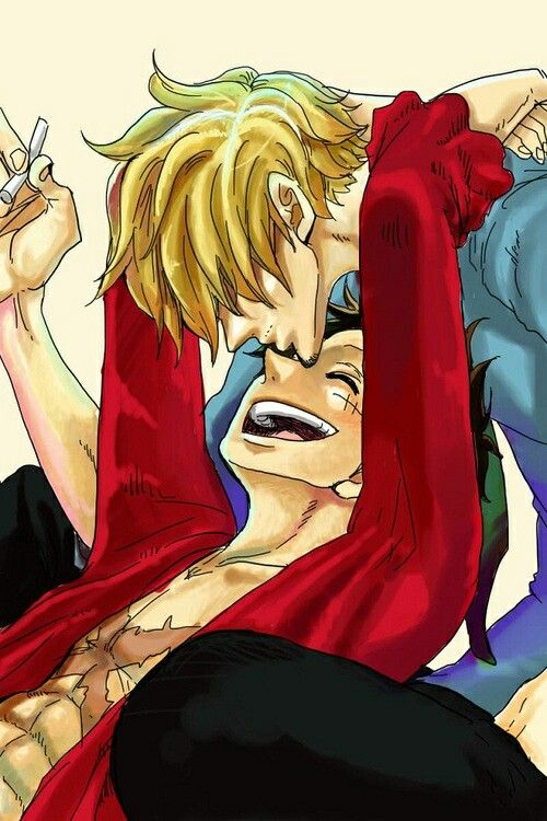 39 best OP Sanji x Luffy images on Pinterest  One