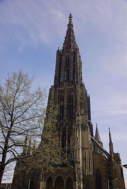 Ulm                                             das berühmte gotische Ulmer Münster mit dem höchsten Kirchturm der Welt