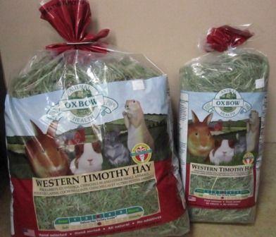 Guinea Pig Diet - Tri-County Humane Society, St. Cloud, Minnesota