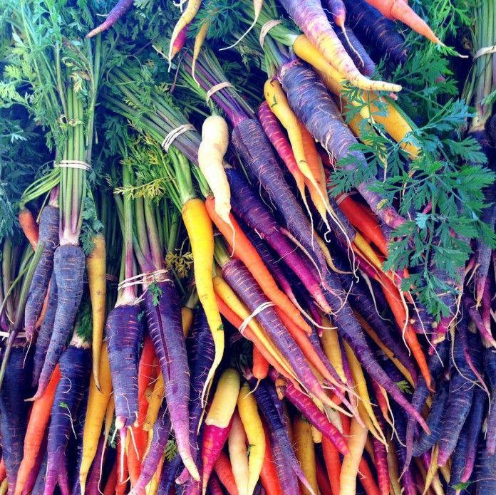 10 Creative Vegetable Garden Ideas: 35 Succulent Gardening Ideas For Small Creative Container