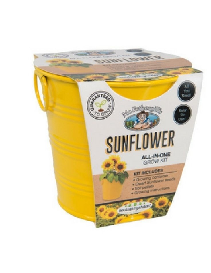 Mr Fothergill S Boutique Gardens Sunflower Grow Kit In 2020 Grow Kit Growing Instructions Kit