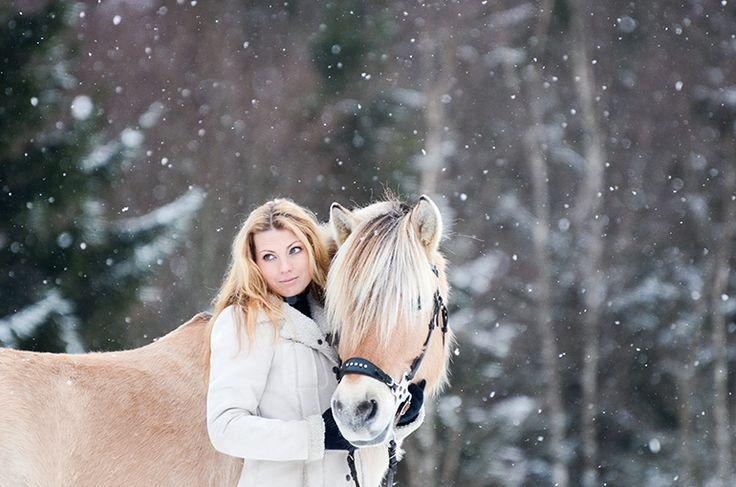 Fjordhäst. Fjording. Vinter. Foto. Häst. Frost. Photography. Fjord horse. Winter. Frozen. Photo by Swedish photographer Maria Lindberg