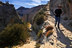 Mount Zion National park in Utah. Great web site for advice on hikes, trails, prices, camping, and gear!
