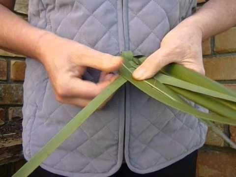 AUCKLAND NZ TOURS - weaving. How to weave putiputi