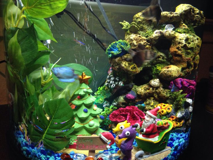 17 best images about fish on pinterest fish tanks for Halloween fish tank decorations