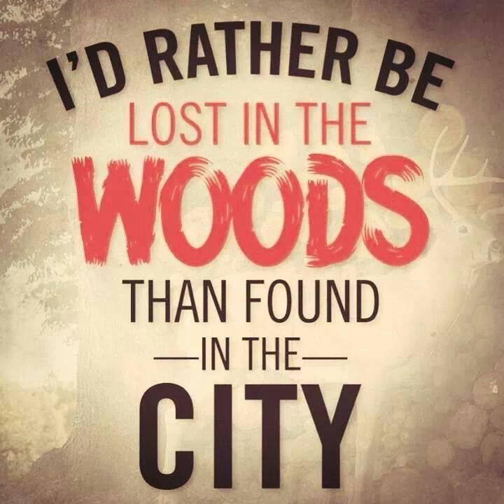 Woods Quotes: 17 Best Images About Campers Do It In The Woods On