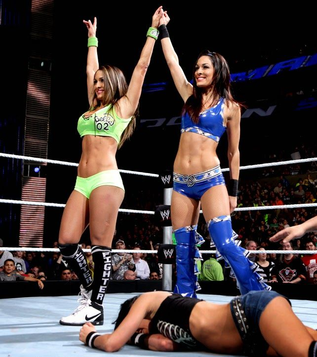 4833 Best Wwe Divas Images On Pinterest  Daughters, Girls