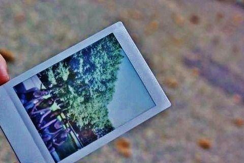 Polaroid, Paris, France