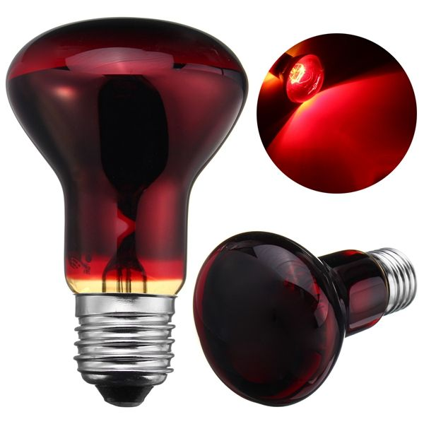 R63 25w 50w 75w 100w Red Nightlight Heater Reptile Light Lamp Ac220 240v Reptile Lights Lamp Light Night Light
