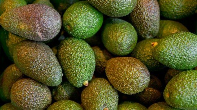 Bio-Avocado liegen in einer Kiste in einem Biosupermarkt in Nürnberg (picture allliance / dpa / Daniel Karmann)