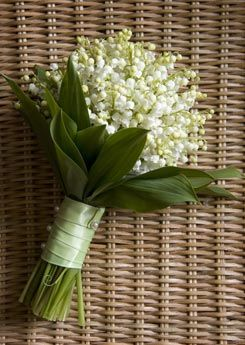"Lilly of the Valley, In the ""language of flowers"", the lily of the valley signifies the return of happiness. Source: bubblybride #muguet"