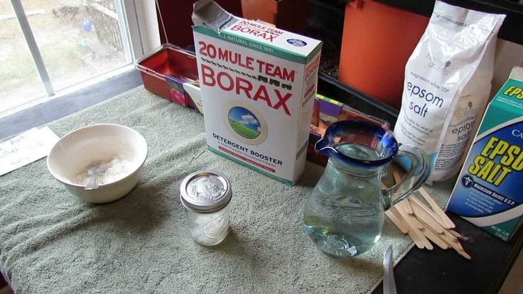 17 Best Images About Ant Killer On Pinterest Gardens Carpets And Borax Ant Killers
