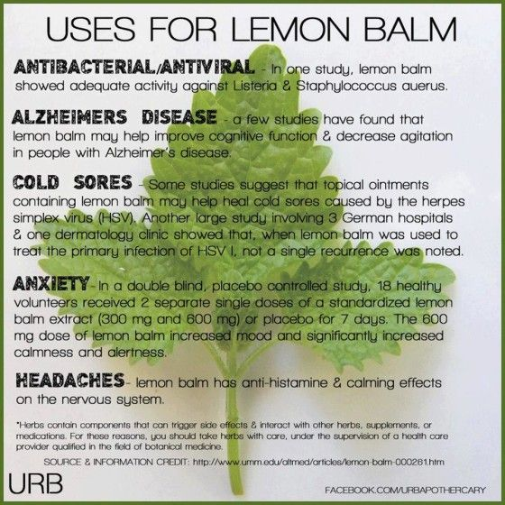 Lemon Balm uses. Great, growing some in the garden now!
