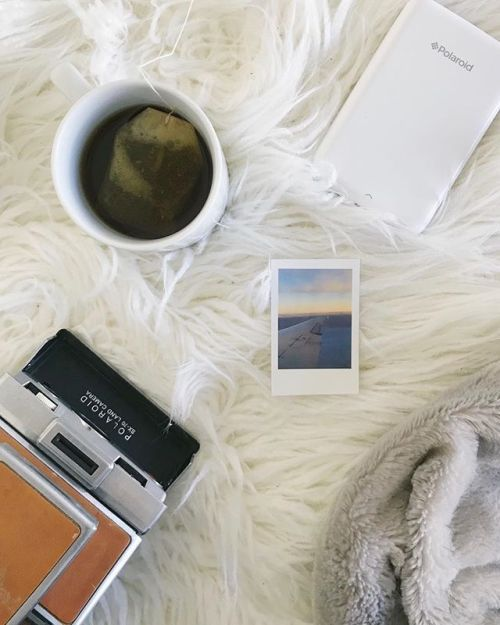 That warm and fuzzy feeling  via Polaroid on Instagram - #photographer #photography #photo #instapic #instagram #photofreak #photolover #nikon #canon #leica #hasselblad #polaroid #shutterbug #camera #dslr #visualarts #inspiration #artistic #creative #creativity