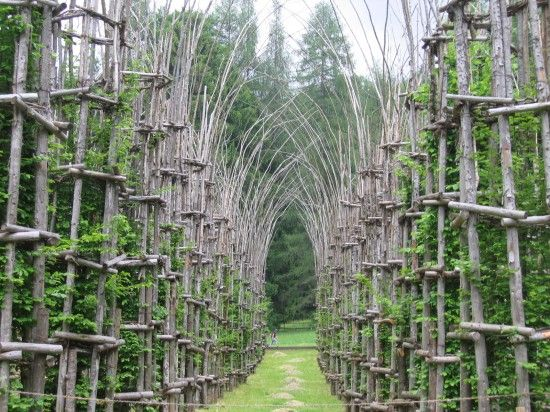 located on the outskirts of bergamo, italy - at the foot of monte arena, 'the tree cathedral' created by italian artist giuliano mauri is one of the world's most impressive examples of organic architecture.