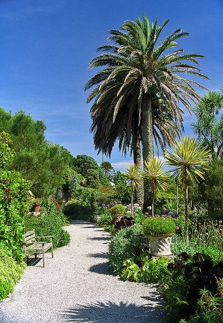 Tresco Abbey Gardens, Scilly Isles, England