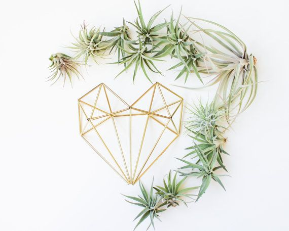 Himmeli fig. 10 - The Heart | Brass Himmeli, Modern Minimalist Geometric Ornament, and Air Plant Holder