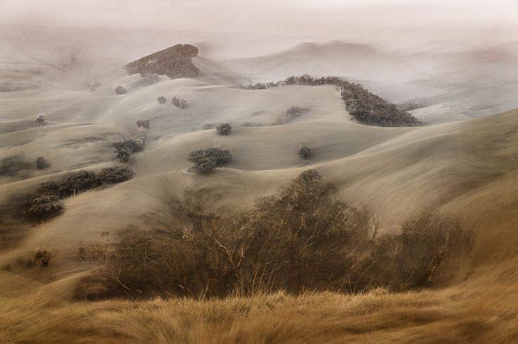 The hills of Strath Creek, like sand dunes.