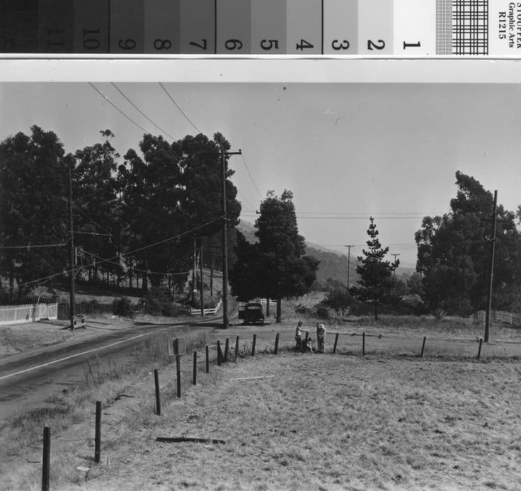 Apartments In San Francisco Bay Area: 77 Best Historic San Leandro Images On Pinterest