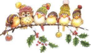zzzzzz oiseaux de noel Christmas birds                                                                                                                                                                                 Plus