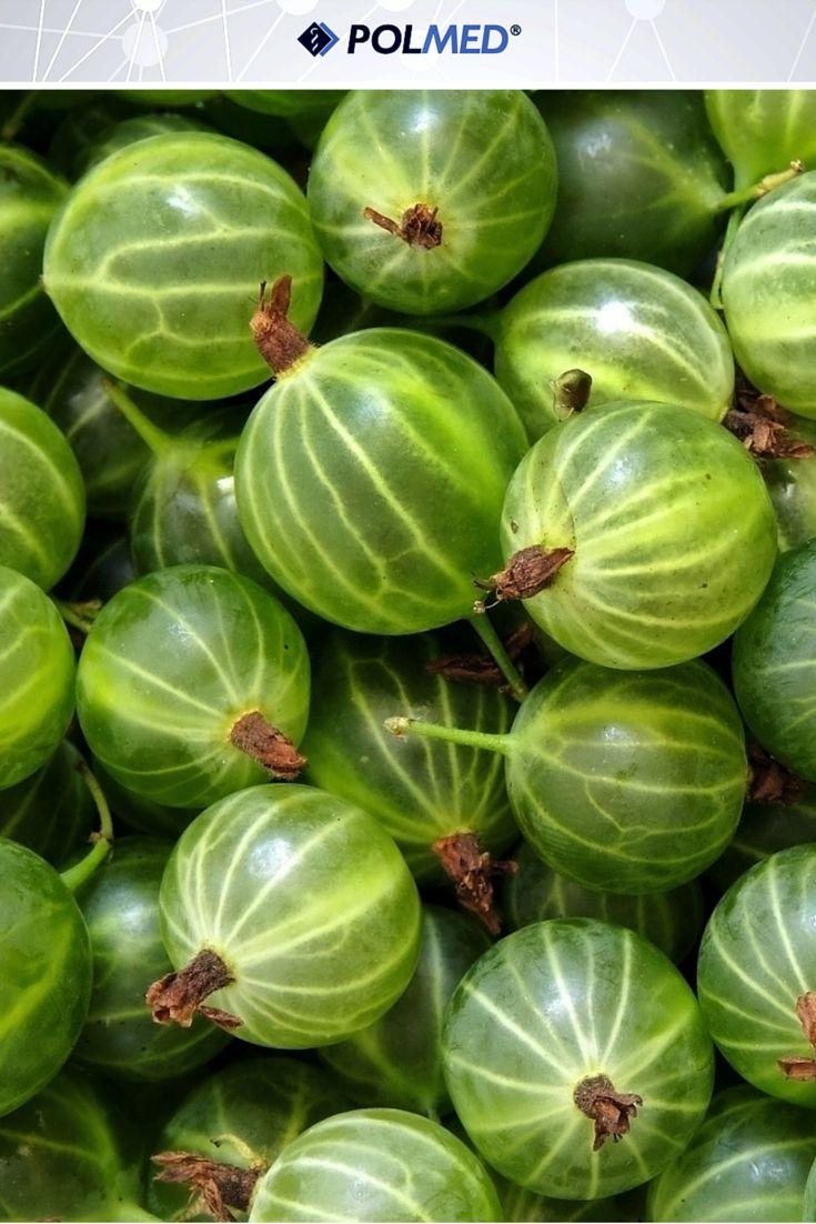 """#Agrest jest źródłem pektyn, które """"wyłapują"""" cząsteczki cholesterolu i obniżają jego poziom we krwi. Zawiera także potas zmniejszający ciśnienie tętnicze oraz rutynę uszczelniającą naczynia krwionośne. Zapobiega więc miażdżycy i chorobom serca. Już za chwilę rozpocznie sie sezon na te owoce! Jedźcie na zdrowie! :D"""