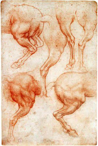 Leonardo da Vinci  - Estudio de caballo