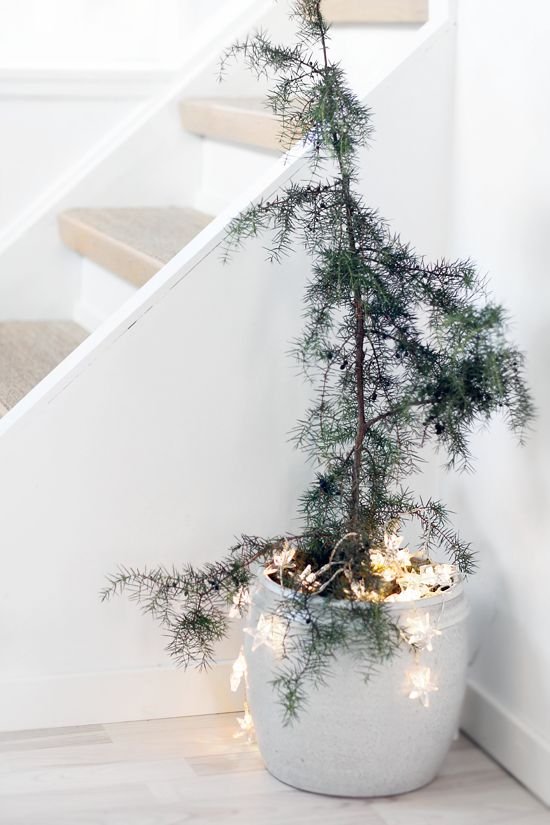Stylizmo Blog shows how to decorate while keeping your aesthetic! I love this idea with twinkle lights even post holiday!
