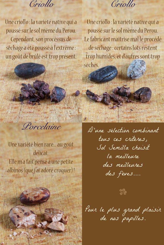 24 best KAOKA - Cacao du0027Équateur images on Pinterest Cocoa