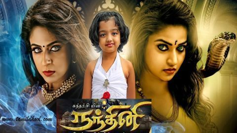 Nandhini 28-08-2017 Episode 185 Nanthini Sun TV