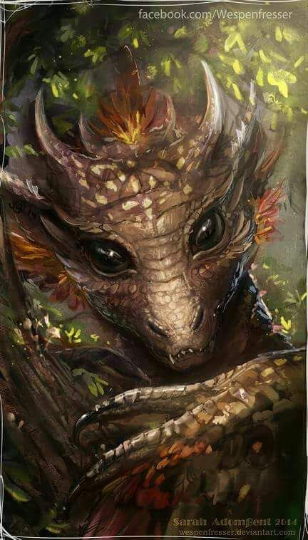 He gazed down upon me, his eyes wide with wonder. Thankfully, he seemed to startled to do me any harm. Could this be who that ridiculous knight had been referring to? This Dragon was not at all what he had described.