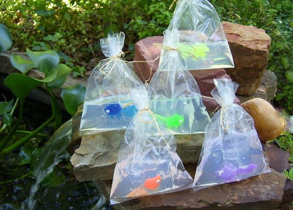 10 Best ideas about Fish In A Bag on Pinterest