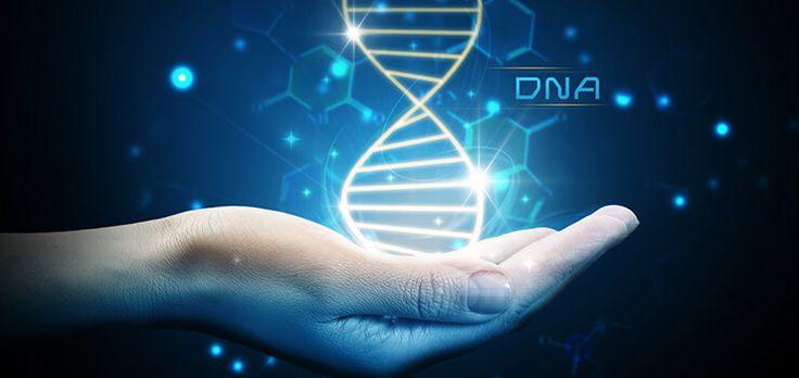 Hur kan ett DNA-test hjälpa din hälsa?  Det får du svar på i den här artikeln av Katarina Hagberg, som dessutom går igenom de olika typer av DNALife-tester du kan beställa från Nordic Laboratories. Kanonspännande! :-)  #DNA #gentest #epigenetik #hälsa #näringförlivskraft #katapultmedia